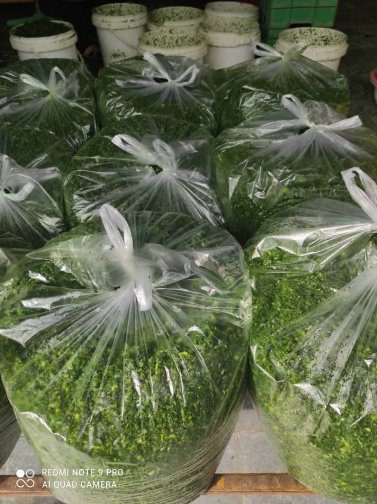 سبزیجات آماده تک